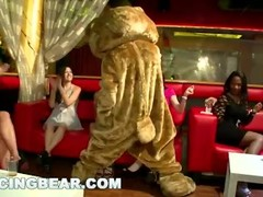 DANCING BEAR - This Night Club Is On Fire! Girls Sucking Dick All Over The Place Thumb